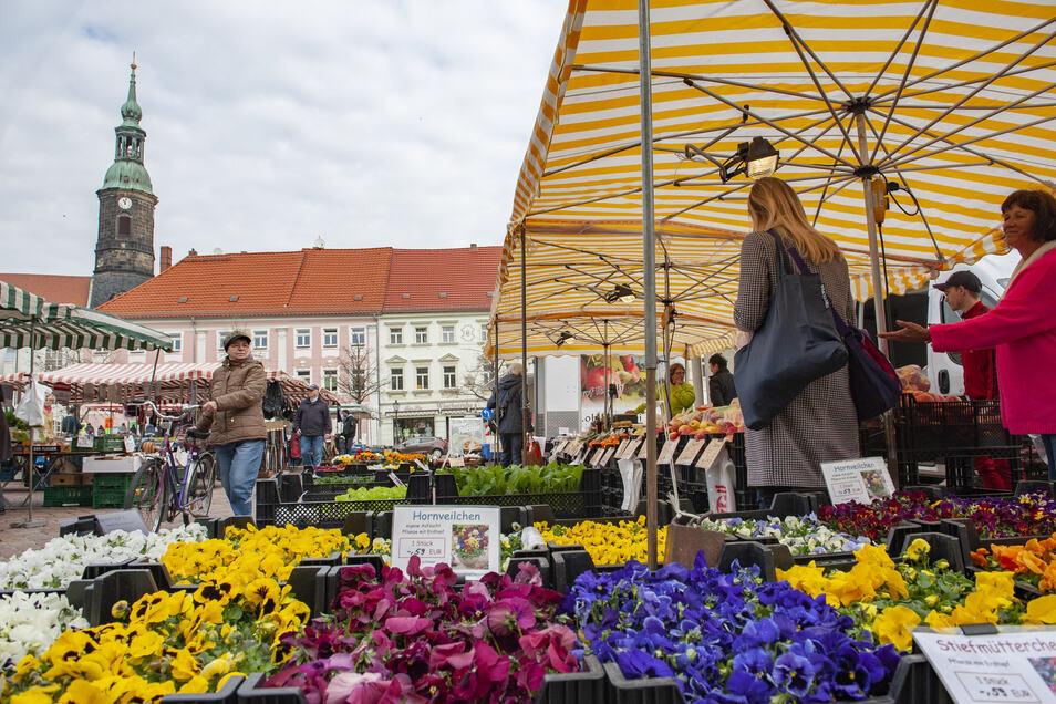 Der Wochenmarkt in Großenhain auf dem Hauptmarkt.