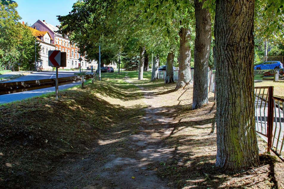 Zwischen dem Ehrenhain und der Etzdorfer Straße hat sich an Trampelpfad gebildet. Der soll befestigt werden.