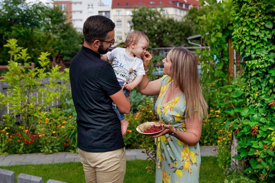 Fast zu süß, um echt zu sein: Kleingarten-Idylle hinter dem Gartenzaun.