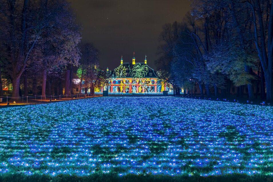 So schön war der Schlosspark Pillnitz mit den Fields of Lights beim Christmas Garden in Szene gesetzt.