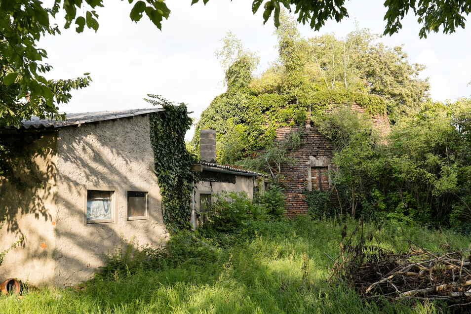 Von der Rückseite aus sind die Reste der alten Klingewalder Windmühle noch ganz gut zu erkennen.