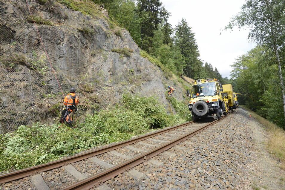 So oder so ähnlich - diese Foto entstand in den Sommermonaten - sieht es aus, wenn im Auftrag der Deutschen Bahn AG die Trasse der Müglitztalbahn gepflegt wird.