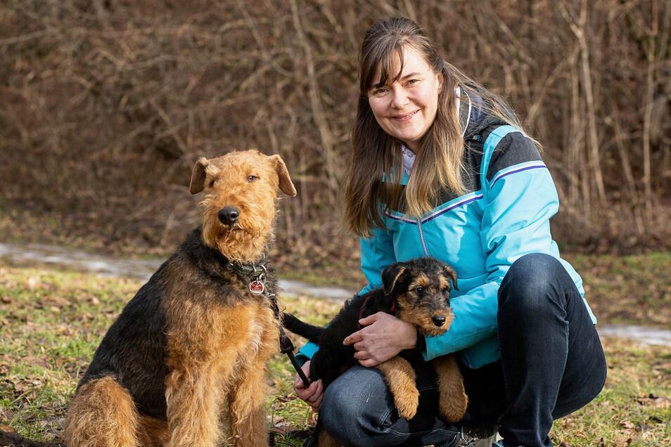 Katja Heller aus Freital züchtet Airedale-Terrier. Hundedame Zakira bekam im November neun Welpen, deren Pflege und Aufzucht sehr aufwendig waren.