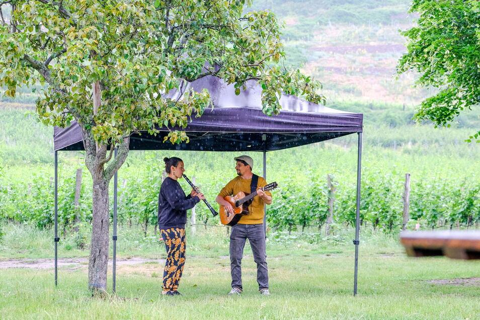 Das Radebeuler Duo Vagabund stimmt auf die Musiksonntage bei den Radebeuler Weingütern ein. Zeltpavillons bieten Schutz vor Regen oder spenden Künstlern und Besuchern Schatten wie auf dem Weingut Aust.