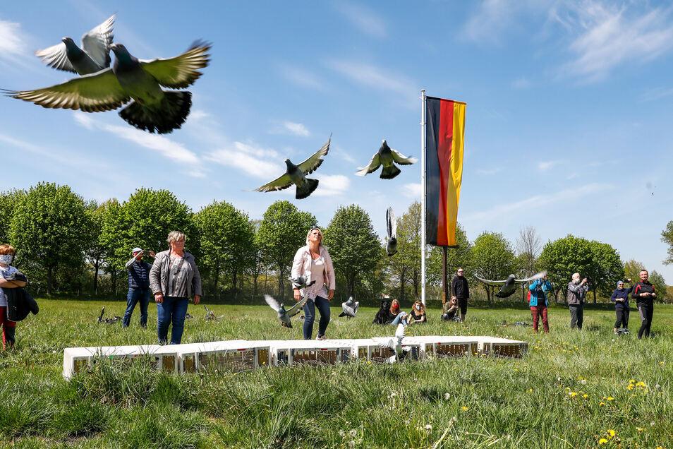 Am Ende flogen über 100 Friedenstauben über das Dreiländereck.