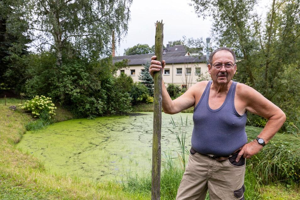 Dieser Teich im Eberhard Küttner ist eigentlich ein kleines Paradies: Hier brüten Enten, es gibt Libellen und Frösche. Doch das Gewässer verlandet, weil der Birkigter Bach immer wieder Abwasser mitführt.