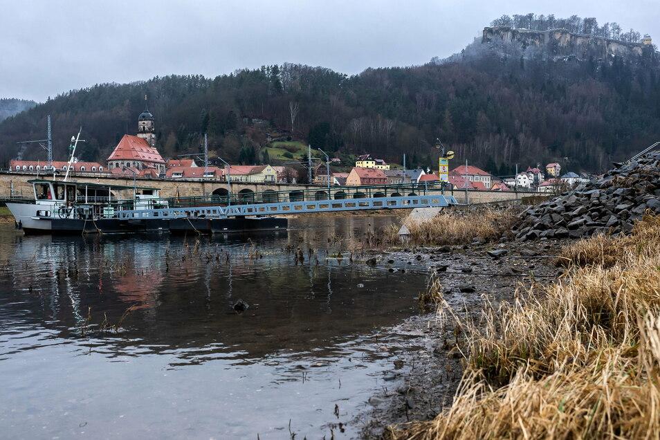 Die Festung im Blick: Die Sächsische Dampfschiffahrt plant 2021 neue Touren - auch nach Königstein.