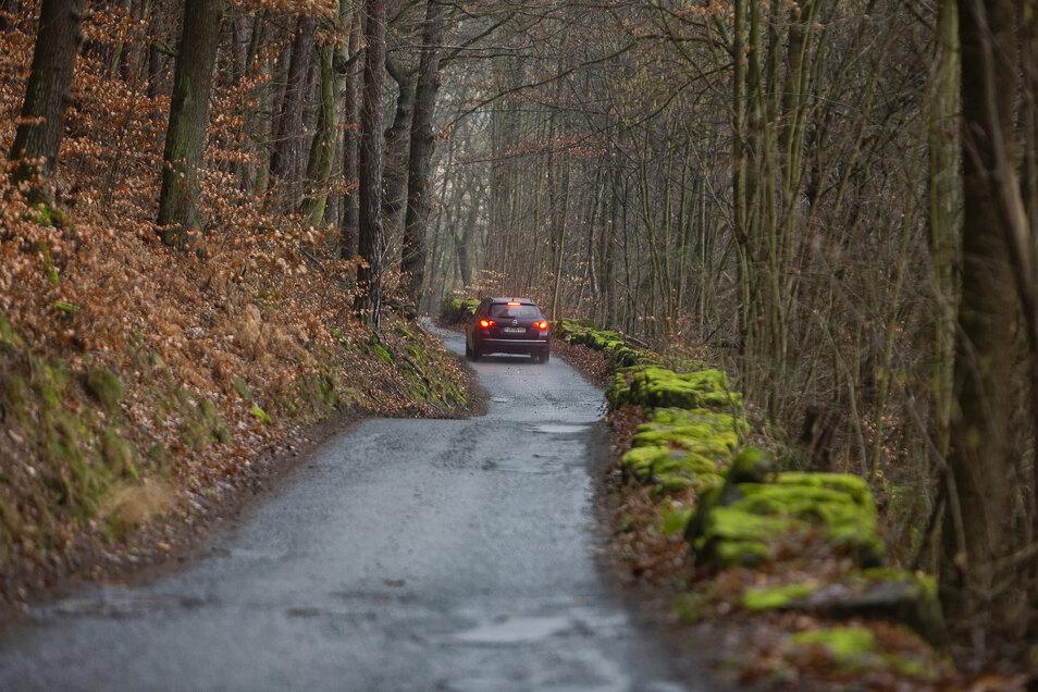 Straße oder Radweg? Eng wird es auf der Strecke zwischen Prossen und Halbestadt auch nach der Sanierung zugehen.