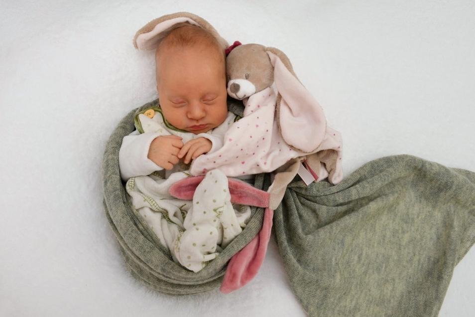 Kora, geboren am 9. Juli, Geburtsort: Freital, Gewicht: 2.470 Gramm, Größe: 45 Zentimeter, Eltern: Kristin und Johannes Storm, Wohnort: Freital