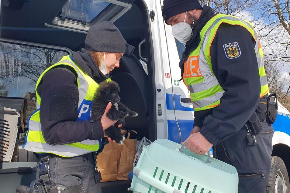 """Die Bundespolizistin, die den Fahrer kontrolliert hat, ist selbst Hundebesitzerin: """"Ich leide sehr mit."""""""