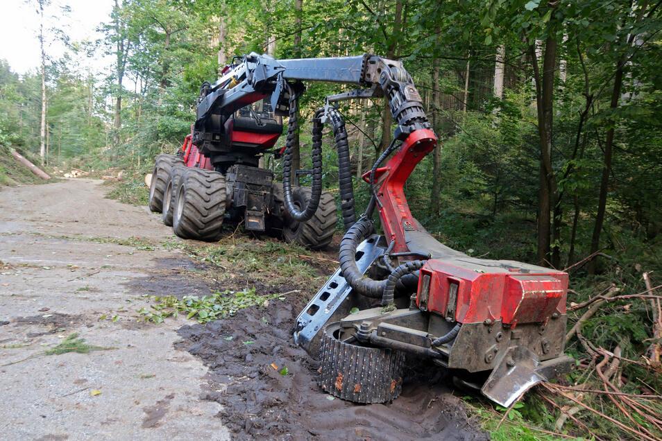 Schweres Gerät im Einsatz. An der Sense werden Bäume beseitigt, um die Straße zu schützen.