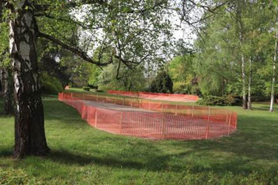 Christo im Birkenwäldchen? Orangefarbene Zäune schützen die neu angelegten Blühinseln.