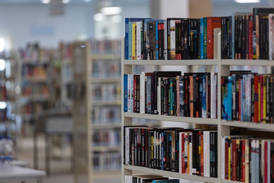 Eintauchen in eine gute Geschichte: Freitals Bibliothek hat mehr als 100 neue Bücher im Angebot. Wer davon etwas lesen möchte, muss sich nur anmelden.