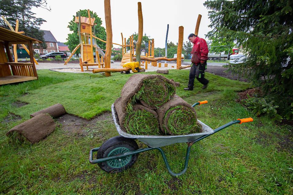 Neuer Rasen wurde auf dem Zeißiger Spielplatz verlegt.