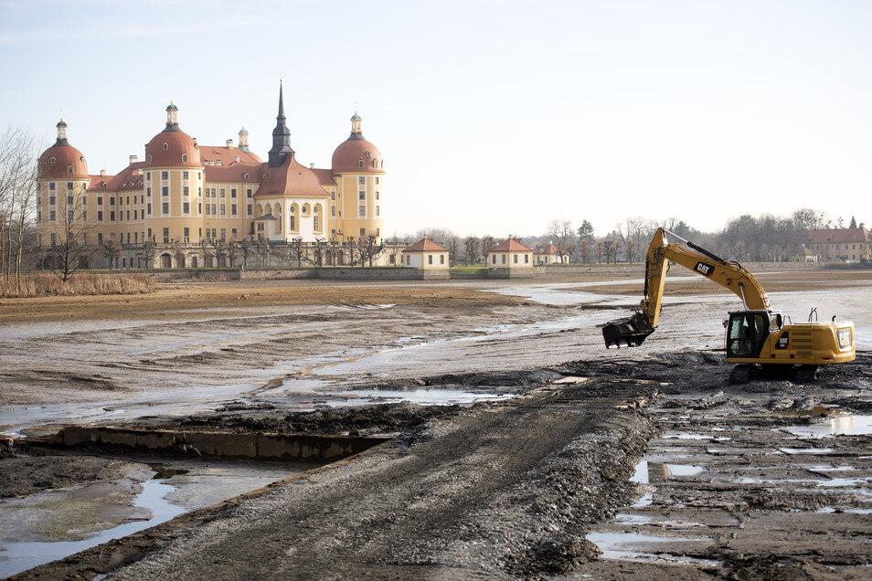 Die Fischgrube des Schlossteichs in Moritzburg wurde nach dem Abfischen im vergangenen Herbst entschlammt. Wann und in welchem Teich als Nächstes gearbeitet werden soll, ist derzeit offen. .
