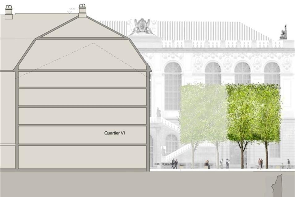 Auf dieser Visualisierung sind die Ausmaße der geplanten Platanen erkennbar.