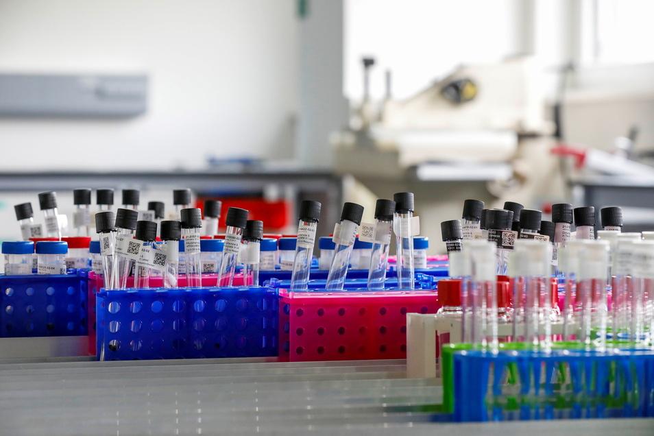 Neue Errungenschaft für das ganze Birkenstock-Imperium: Das Labor in Bernstadt, in dem acht Mitarbeiter vor allem chemische Analysen der eingesetzten Materialien durchführen.