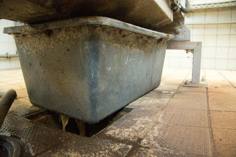 Das ist die Lösung, die Töppner verwirklicht hat. Durch die einfache Baukiste kann das ausgepresste Wasser unter der Rechengutpresse ordentlich abfließen.