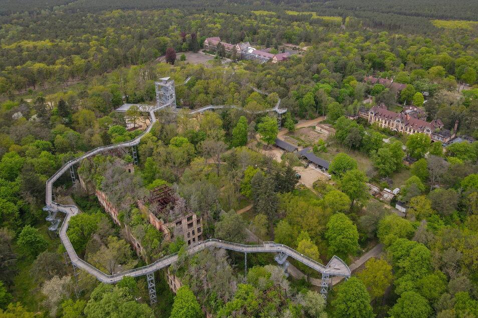 Brandenburg, Beelitz: Der Baumkronenpfad Beelitz-Heilstätten ist wieder geöffnet.
