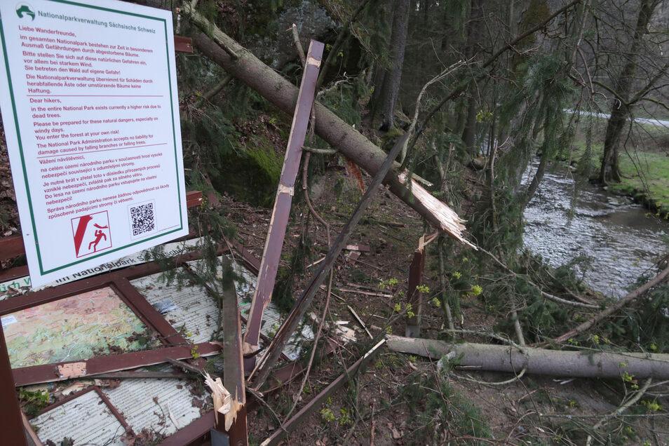 Gefahr durch Baumstürzen - das Warnschild hängt noch.