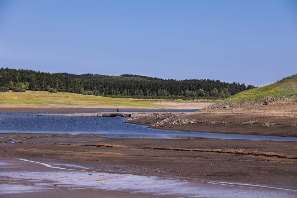 Zu niedrigem Wasserstand wie hier in der Talsperre Lehnmühle kommt künftig auch vermehrtes Algenwachstum als Problem dazu.