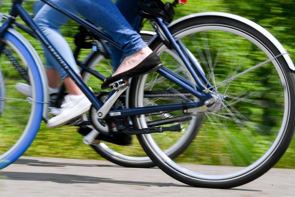 Auf dem Elberadweg wird es oft eng. In Pieschen sind sich jetzt zwei Radfahrer zu nah gekommen.