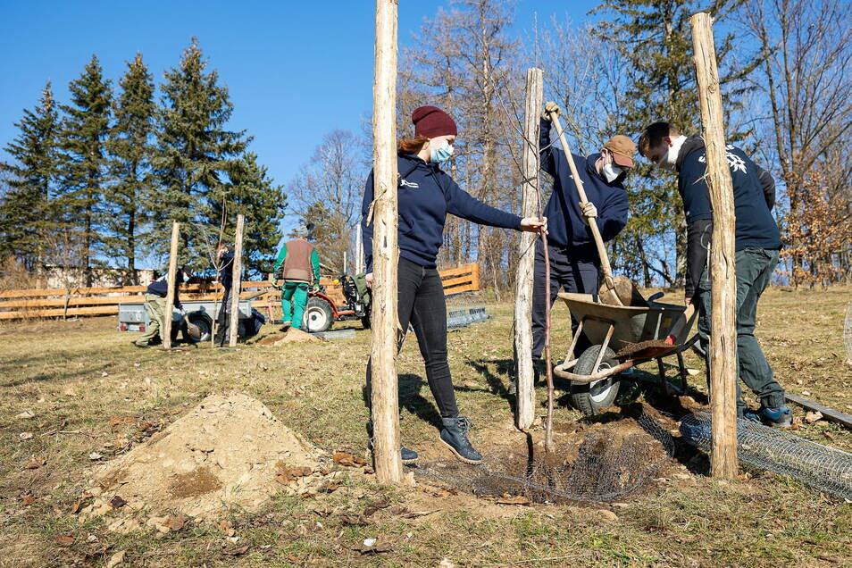 Der neue Park entsteht oberhalb des Kindergartens.