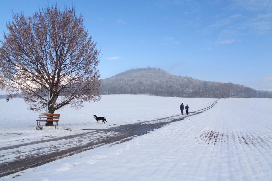 Mit Hund und Ausblick: Spaziergänger an der Landeskrone. Gegen Monatsende machte der Görlitzer Wolfgang Breitkopf dieses Winterfoto.