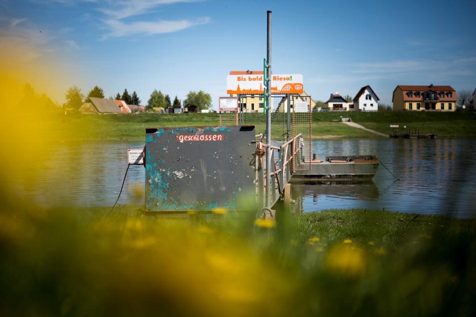 Der Anleger von Riesas Fähre Riepro ist zu, da das Schiff nach wie vor zur Überprüfung in Meißen ist.