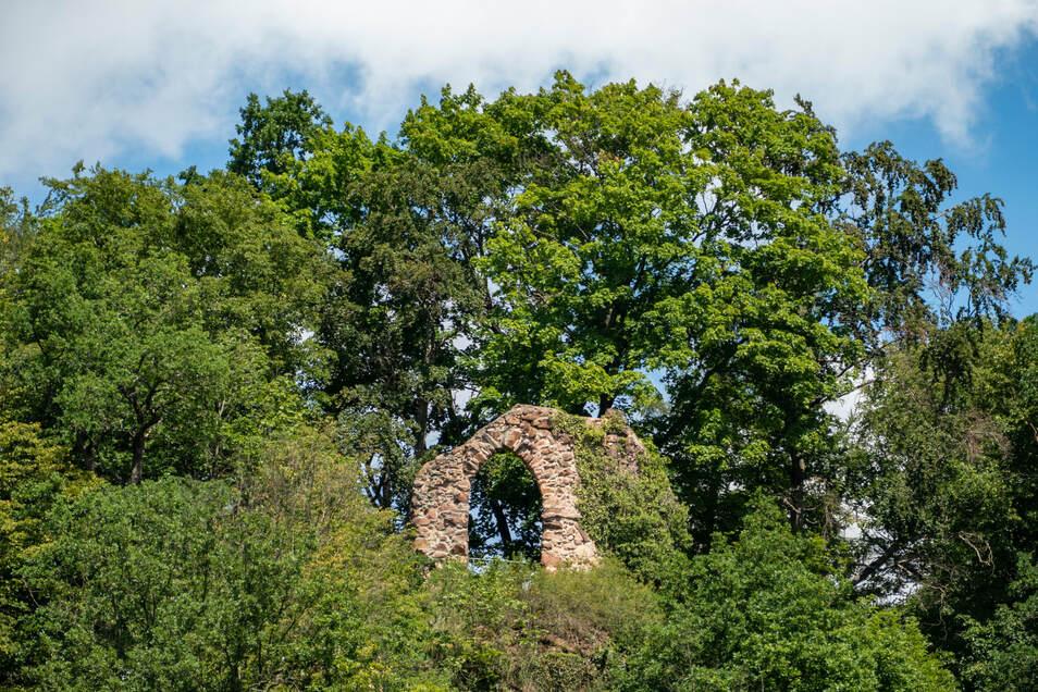 Ein Geheimtipp von Wegewart Marco Austin ist das Ringethaler Raubschloss auf dem Pfaffenstein. Von dort gibt es einen wunderbaren Blick.