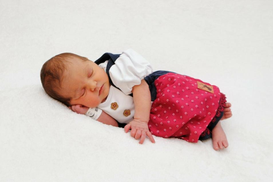 Elisabeth, geboren am 8. Juni, Geburtsort: Meißen, Gewicht: 3.405 Gramm, Größe: 49 Zentimeter, Eltern: Daniela und Martino Kurz, Wohnort: Meißen