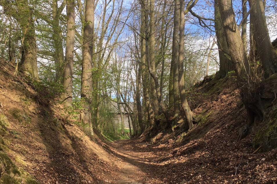 Dieser Weg verband den Bischofssitz Meißen mit der Burg Stolpen in den Jahren 1218 bis 1559.