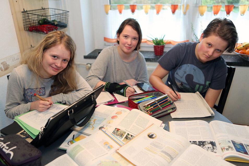 Symbolfoto: Kinder und Jugendliche müssen Schulaufgaben zu Hause machen. Teilweise am Küchen- oder Wohnzimmertisch.