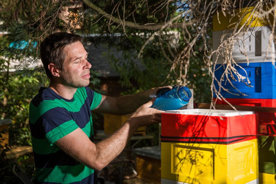 Lasst es euch schmecken! Sofort stürzen sich die Bienchen auf das Zuckerwasser.