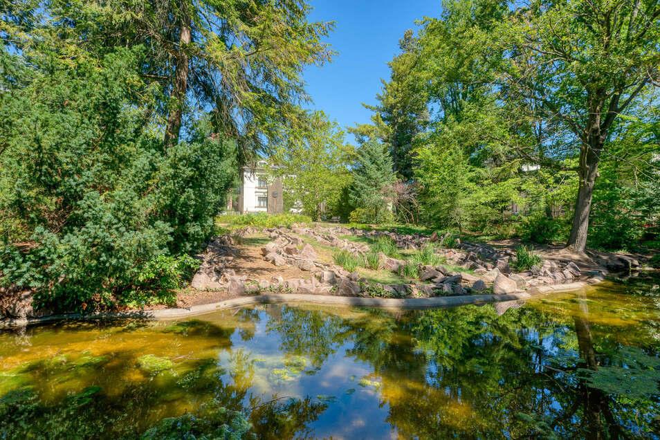 """Unbekanntes Kleinod: Der """"Silbersee"""" im Karl-May-Hain, hinten die """"Villa Shatterhand"""" auf der anderen Straßenseite."""