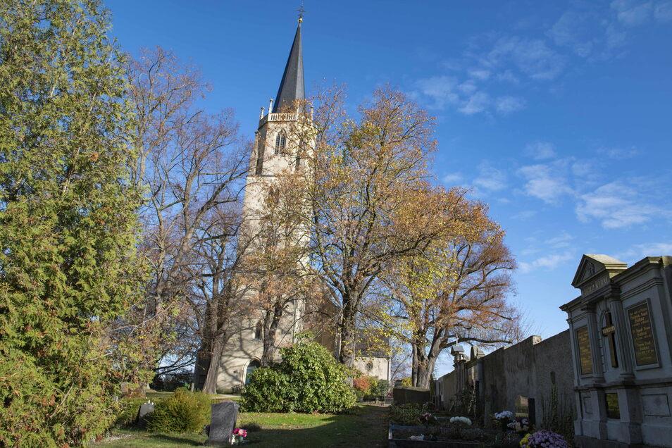 Unübersehbar, inmitten einer herrlichen Landschaft, ist die Wantewitzer Kirche zu finden. Und in ihr ein felliger Geselle, der hier sein Winterquartier bezogen hat.