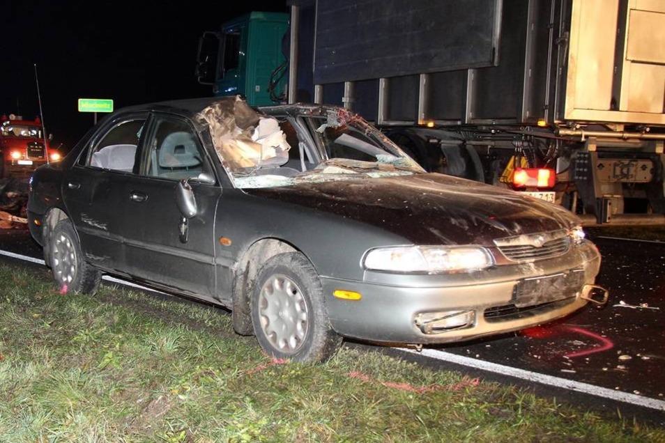 ...und die Mazda-Fahrerin hatten in der Dunkelheit keine Chance, den Tieren auszuweichen.