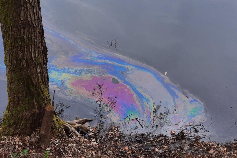 Deutlich war der ausgelaufene Diesel auf der Wasseroberfläche des Steinbruches in Zockau zu sehen.