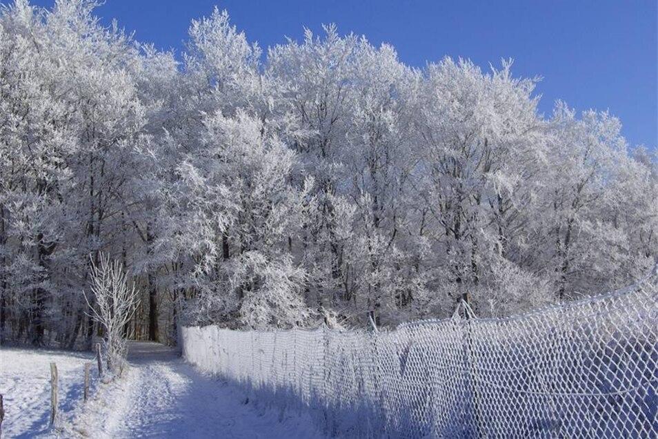 Hertigswalde.  Barbara und Rainer Hauswald aus Hohnstein wanderten von Hertigswalde zum Tanzplan in Tschechien - bei traumhaftem Winterwetter.