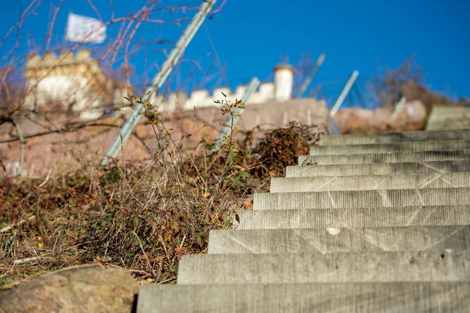 Die bereits vor einigen Jahren neugebaute Weinbergtreppe zur Friedensburg ist Teil des Wanderweges. An ihrem oberen Ende wird eine der beiden Plattformen gebaut.