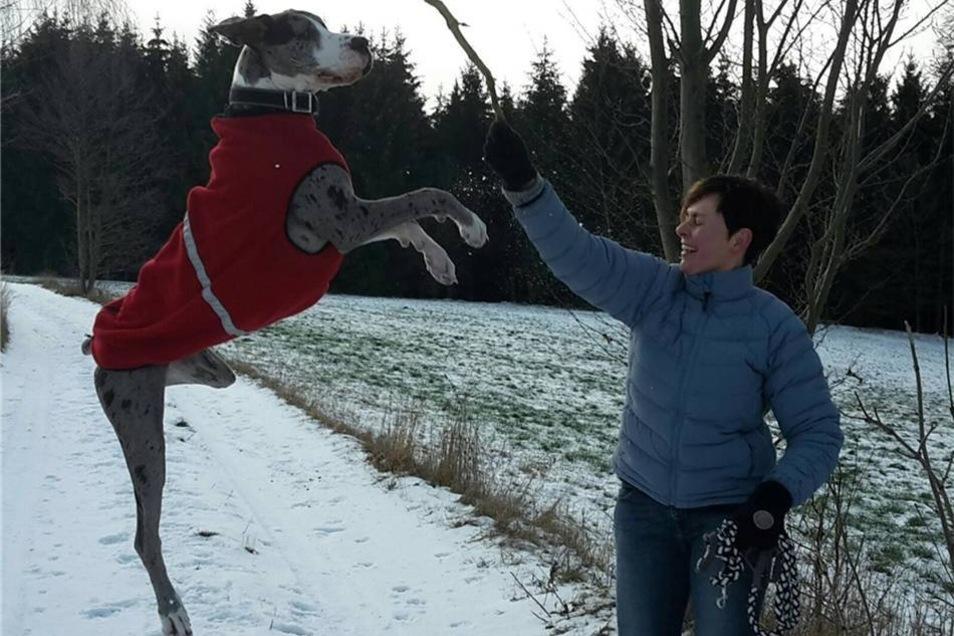 Deutsche Dogge Lotte hat Spaß im Schnee – und mit Frauchen Claudia Langer aus Polenz. Entstanden ist der Schnappschuss im Polenztal.