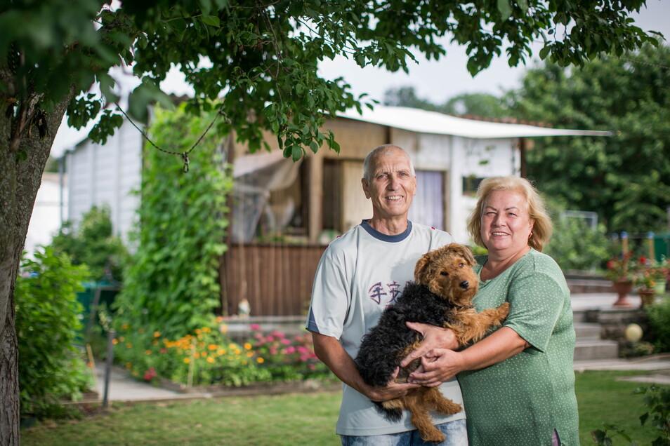 """In der Kleingartenanlage """"Am Tummelsbach"""" fühlen sich Larissa und Oleg Elert mitsamt Terrier Jacky wohl."""