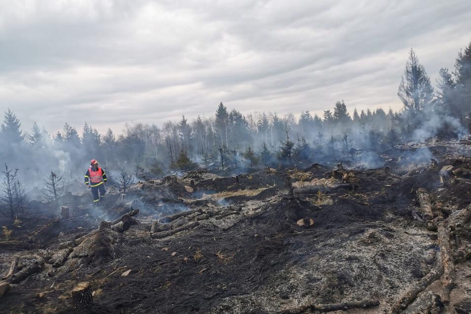 Unweit der deutsch-tschechischen Grenze gab es am Dienstagnachmittag einen Waldbrand.