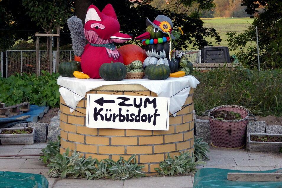 Hier geht es zum Kürbisdorf Ludwigsdorf bei Görlitz, wo jedes Jahr die schwersten Kürbisse in Sachsen ermittelt werden.
