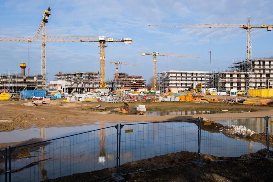 Baukräne stehen an Neubauten von Mehrfamilienhäusern. In Deutschland werden noch immer zu wenig neue Wohnungen fertig.