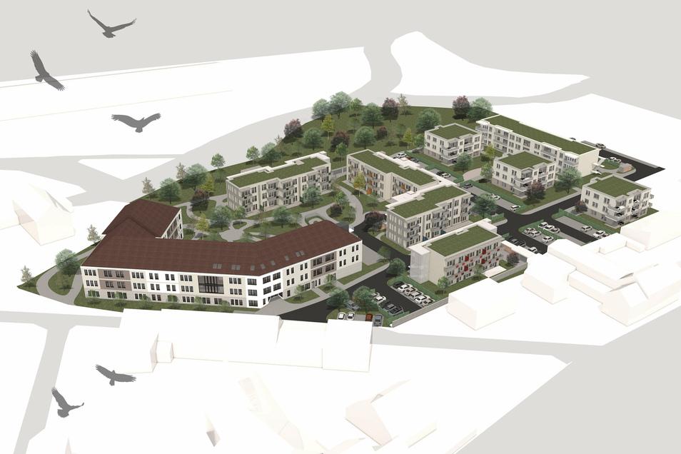 Das künftige Pflegeheim ist das große Gebäude links. Daran schließen sich in der Mitte die drei Häuser für das betreute Wohnen an. In dem vierten Gebäude im Vordergrund sollen eine Arztpraxis und Mitarbeiterwohnungen untergebracht werden. Rechts die vier