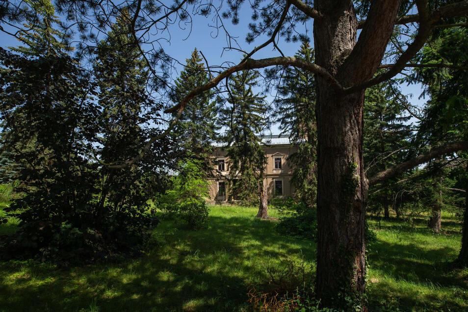 Verwunschen liegt die Villa Lützow inmitten eines großen Parks an der Pechhüttenstraße in Heidenau.