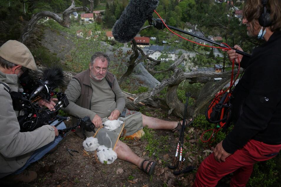 Ein Arte-Filmteam dreht eine dreiteilige Natur-Doku entlang des Oberlausitzer Bergwanderwegs und hat Ulrich Augst am Donnerstag beim Beringen begleitet.