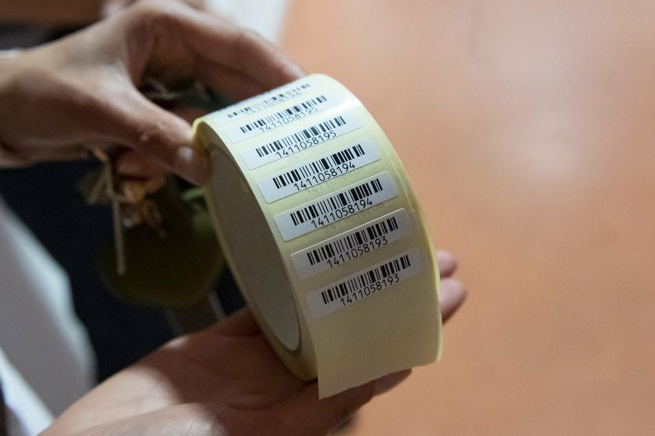 Jedes Asservat erhält eine Nummer, die im System vermerkt und aufgeklebt wird. So soll Missbrauch verhindert werden.