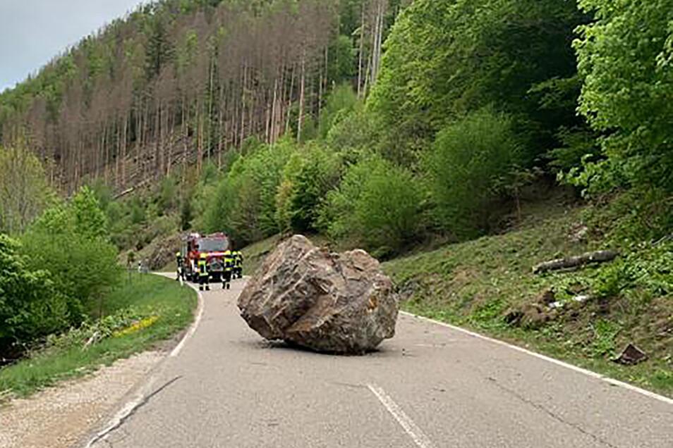 Auf dieser Straße im Schwarzwald war nach dem Felssturz kein Durchkommen mehr.Foto: dpa/Klaus Merz